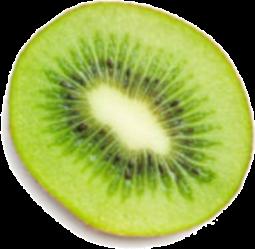 kiwi2.png